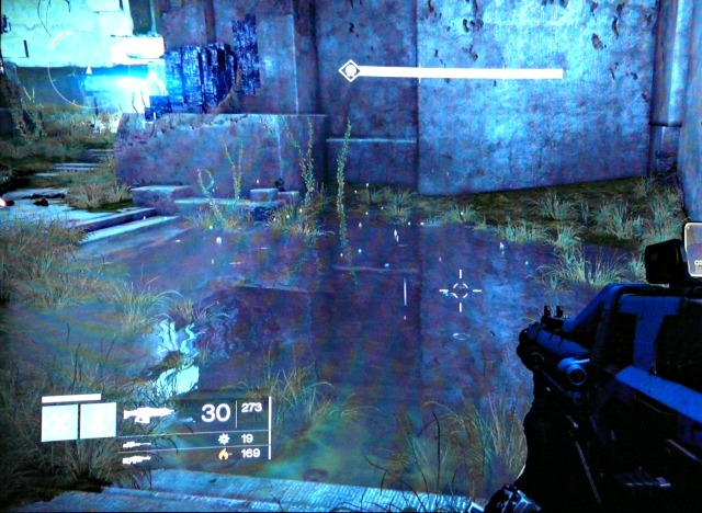 This doesn't show it well, but bubbles float up out of the water in the Black Garden.