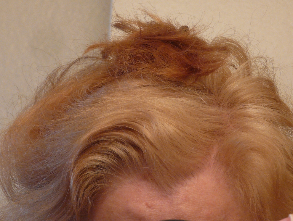 Orange Hair: Misadventures in Going Natural from Dark Brown (Part ...