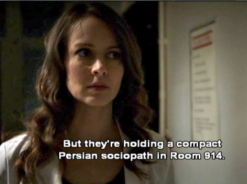 Person of Interest, Ep 21, compact Persian sociopath